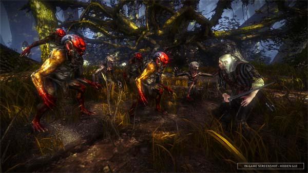 The Witcher 2: Assasins of Kings, nuevos vídeos de gran duración y varias capturas